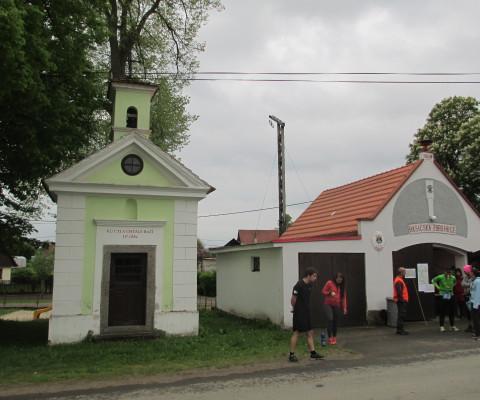 Zdenek-16